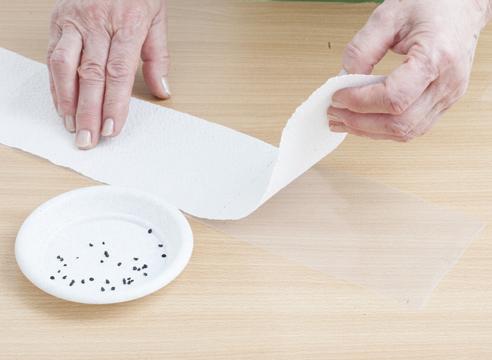 Sếp tờ giấy vệ sinh lên trên màng nilon
