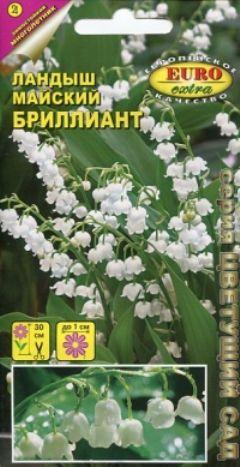 hoa-linh-lan