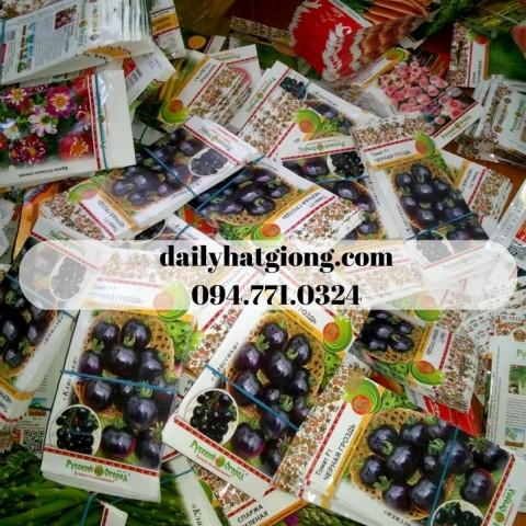 dailyhatgiong.com094.771.0324 (2)
